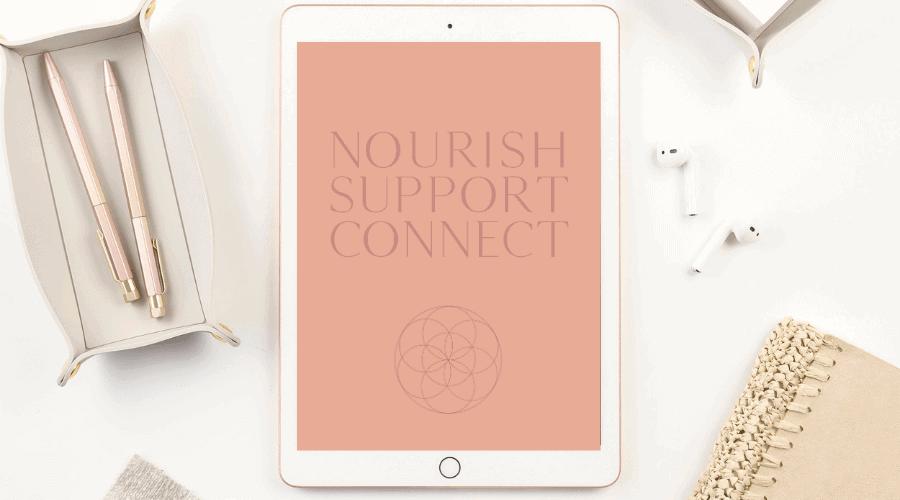 Dr Nina Integrative Medicine Doctor Website-and-Brand Design-Nourish-Support-Connect