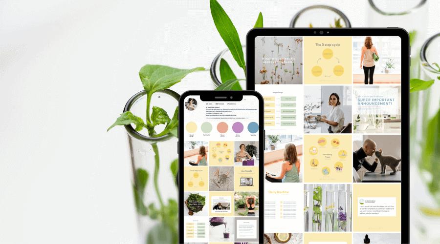 Dr Nina Integrative Medicine Doctor Website-and-Brand Design-instagram