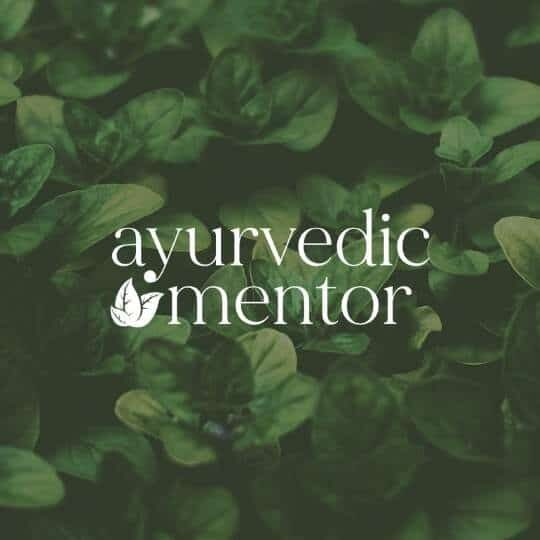 Ayurvedic Mentor_Be more you branding portfolio